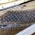 星海家庭用アップグレード試験縦型ピアノ実木音板ドイツパーツ凱旋シリーズ家庭用K 132